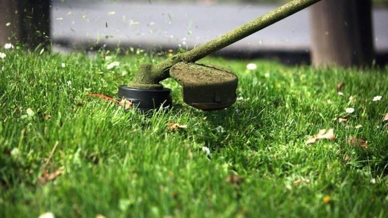В Суворовском районе начался покос травы.